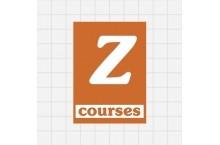 ZNO Courses