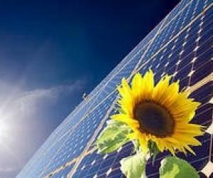 Львівських школярів навчатимуть енергоефективності