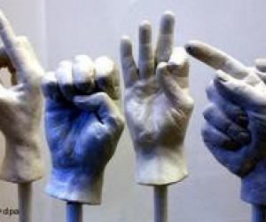 У Європі з'явиться перший університет з викладанням мовою жестів