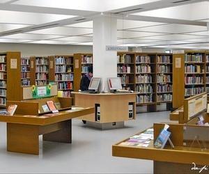 Мінкультури планує масштабну комп'ютеризацію бібліотек