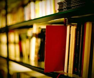 У міністерстві освіти планують забезпечити видання підручників для учнів 11 класу до 1 серпня