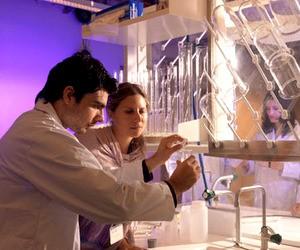 Стипендіальні дослідницькі програми в ОАЕ