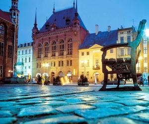 Навчальні візити до Польщі (Study Tours to Poland) восени 2011 року