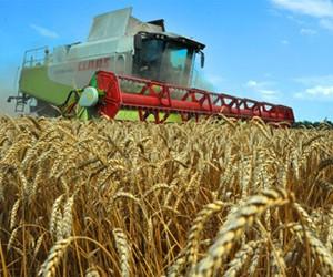Аграрне господарство потребує фахівця нової генерації