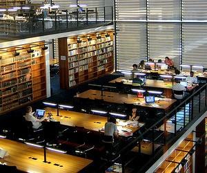 Безкоштовна вища освіта в Університеті ім. Мартіна Лютера (Німеччина)