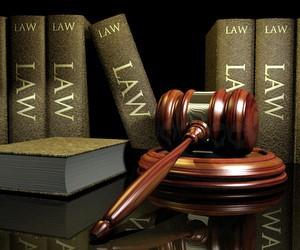 """В """"Nikland"""" стартує магістерська програма для юристів"""