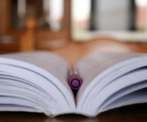 Міністерство освіти затвердило перелік навчальних програм для початкової школи