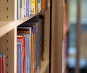 Міністерство освіти проведе конкурс рукописів підручників для початкової школи