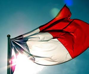 Французькі університети намагаються залучати іноземних студентів