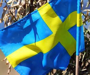 Кількість іноземних студентів у Швеції скоротилася на третину