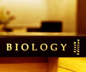 7 червня відбудеться ЗНО з біології