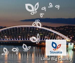 Національна стипендіальна програма Словацької Республіки для іноземців