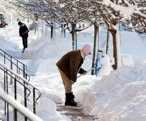 Ректорів просять очистити території навчальних закладів від снігу