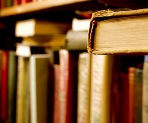 Визначено результати ЗНО зі світової літератури