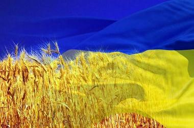 У Києві волонтери безкоштовно навчають українській