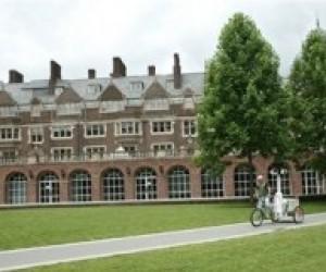 Гарвард вимушений звільнити 275 людей