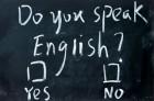 Більшість українців не володіє іноземними мовами