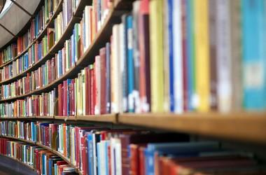 Літературна освіта: занепад і шляхи відродження