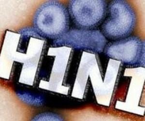Пам'ятка МОЗ щодо грипу типу А/Н1N1