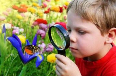 Вчимося цікаво: пізнавай себе і навколишній світ