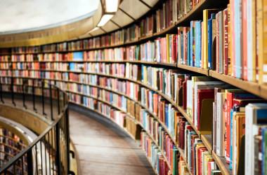 Наука має стати інтегральною частиною вищої освіти, - МОН