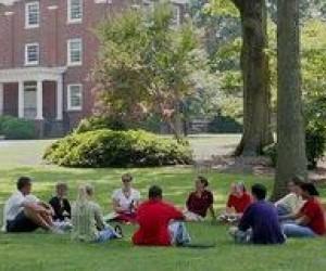 Вища освіта за кордоном: коледжі, як альтернатива університетам