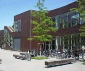 """Літня школа """"FUBiS"""": Берлін, студенти і... трохи навчання"""