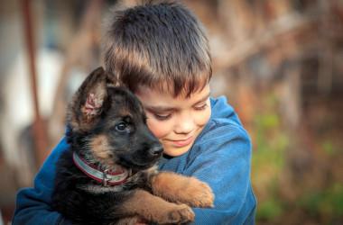 МОН пропонує провести Всеукраїнський урок доброти